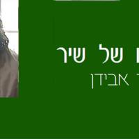 """דוד אבידן, """"יפוי כח"""": הָעֻבְדָּה הַפְּשׁוּטָה, הַחוֹתֶכֶת, שֶׁאֵין לָנוּ בְּעֶצֶם לְאָן לָלֶכֶת"""